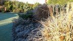 okrasne-travy-vnesou-do-zahrady-krasnou-jemnou-texturu-a-pri-prvni-namraze-se-zahali-do-stribrnych-tonu.-144x81.jpg