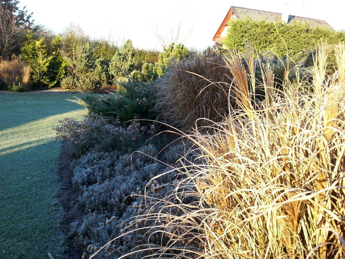 136a74771cf Zahrada může být v zimě ještě krásnější
