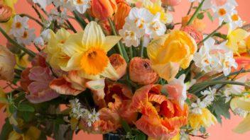 rozkvetle-jaro-u-nas-doma-1-352x198.jpg