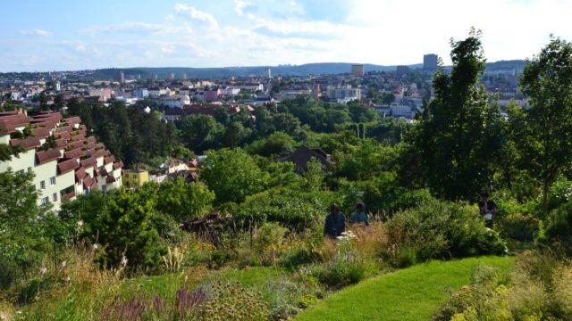 Prohlédněte si jednu znekrásnějších zahrad Česka