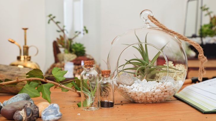 19bonami_urban-botanist-1085_18830619426_o-728x409.jpg