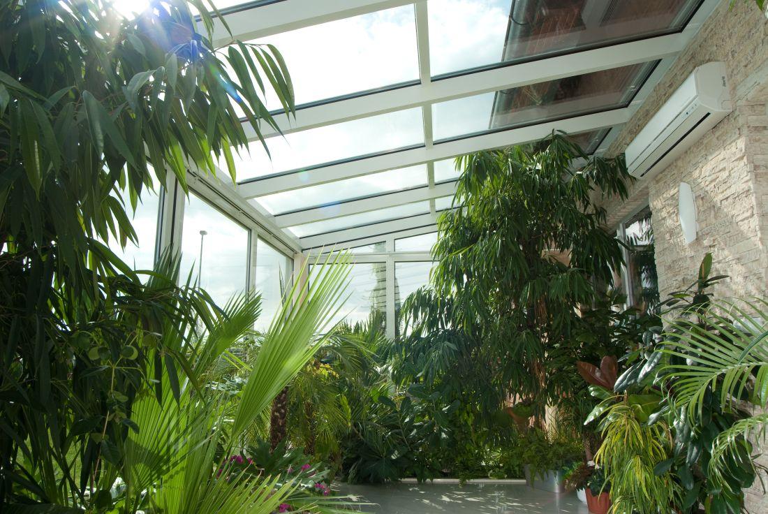 12zimni_zahrada_rostliny1_interier_zdroj_dafe-plast.jpg