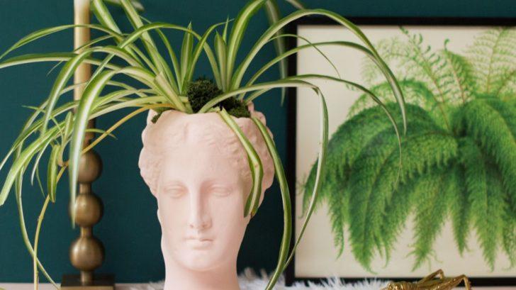 11blusaudenza_h-hygeia-vase-al76.-lush-fern-framed-print-al32.-luca-brass-candle-holder-al28.-728x409.jpg