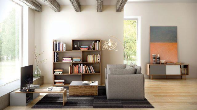 Dominantou vašeho bytu se může stát třeba knihovna