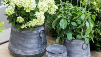 4garden-trading_garden-tading-chadlington-planters--352x198.jpg