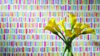 jika_koupelna_kvetiny_obklady-zoom-dekor-multicolor-144x81.jpg