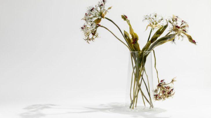 10_lilla-tabasso-aglio-orsino-con-coleotteri-milano-2018-728x409.jpg