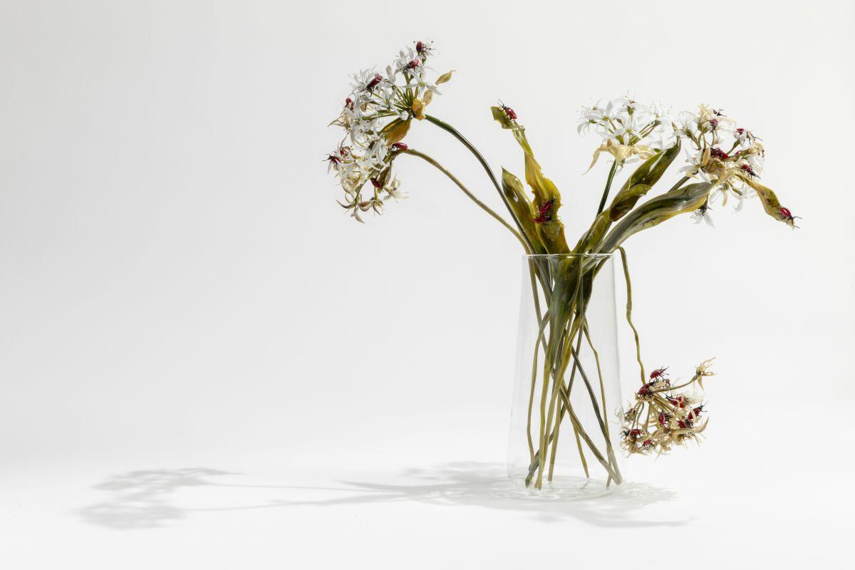 10_lilla-tabasso-aglio-orsino-con-coleotteri-milano-2018.jpg