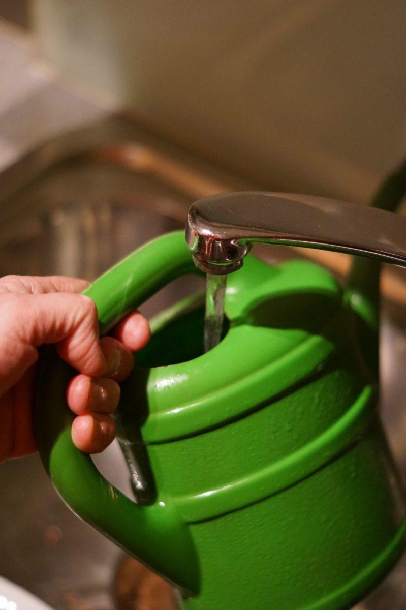 5water-4073018-1200x1200.jpg