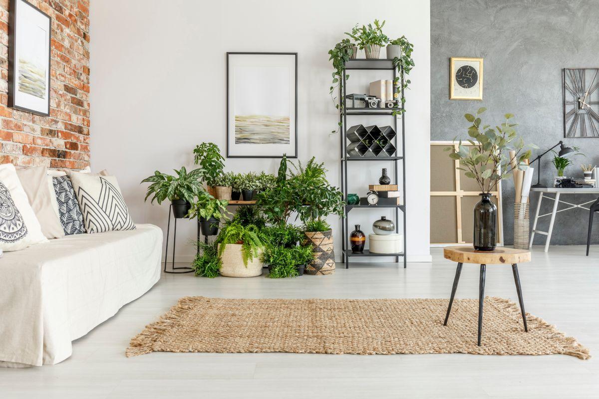obyvaci-pokoj-s-rostlinami.jpg