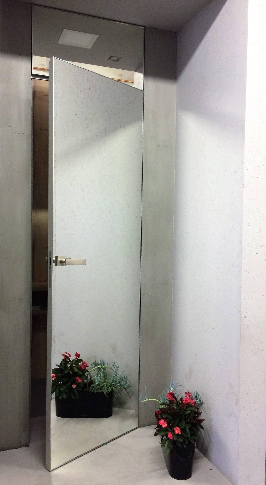 21dvere_master_door_se_zrcadlovym_oplastenim-2.jpg