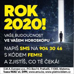 rok-2020-black