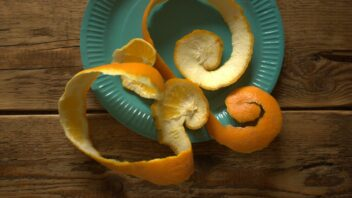 pomeranc_02-352x198.jpg